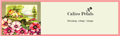 Calicopetalsbanner copy