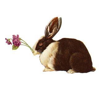 Eastergiveawayforget