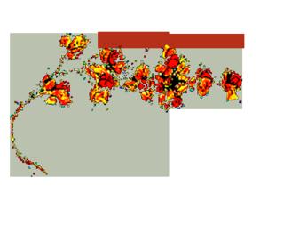 Bittersweetplant