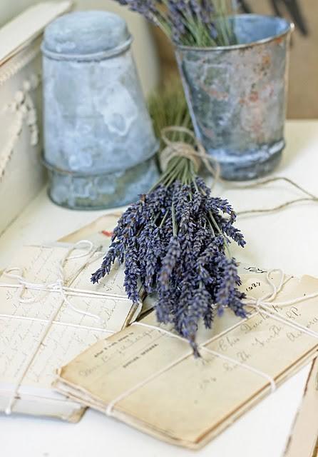 Lavenders6