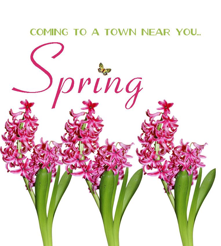 Springtown1