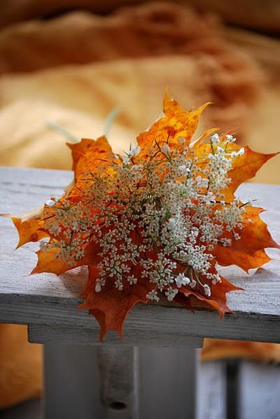 Fallflower2