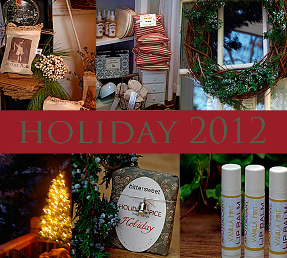 Holidaywebsitefrontpage