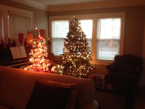 Christmashouse5