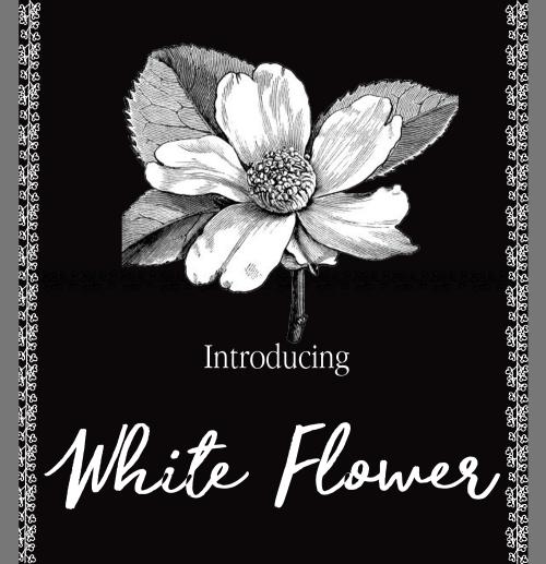 Whiteflowerboxpromo