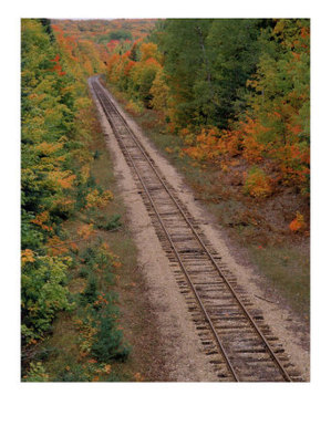 Autumn_train